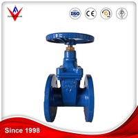 Gate Valve DIN F4 Cast Iron
