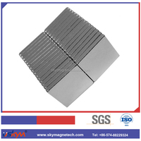OEM,ODM Strong Force Rare Earth neodymium block magnet