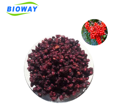 100% Nature Dried Schizandra Fruits