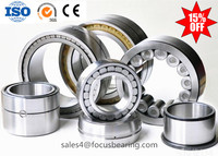 SL Seriers Full Complement Cylindrical Roller Bearing SL 18 2919