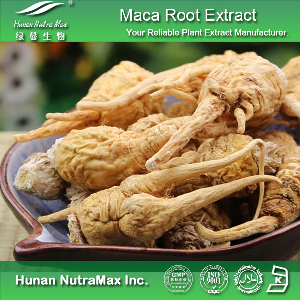 The Best Selling Maca Root Extract