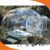 hot selling inflatable transparent bubble tent/bubble room/oudoor clear camping tent
