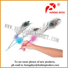 Peacock Feather Pen Wholesale