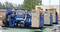 biogas /natural gas generator price 10kW-300kW.
