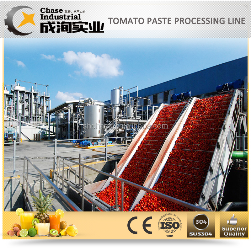 small scale full automatic complete TOMATO PASTE production line