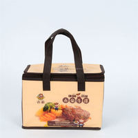 Top selling attractive style outdoor usb cooler bag with many colors