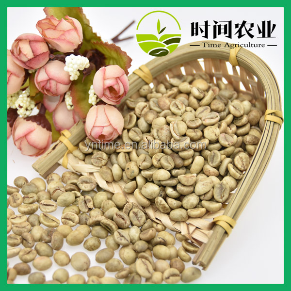 purchase bulk best quality green robusta coffee beans