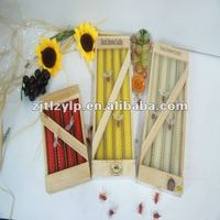 hand-rolled Beeswax candle