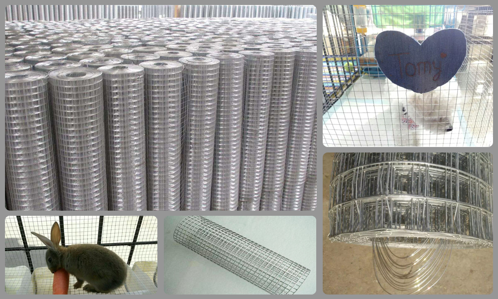 Wholesale High Strength 6 Guage Construction Galvanized Welded Wire Mesh/Screen