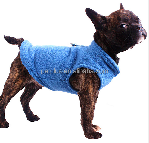 pet lovable dogs sexy name winter clothes
