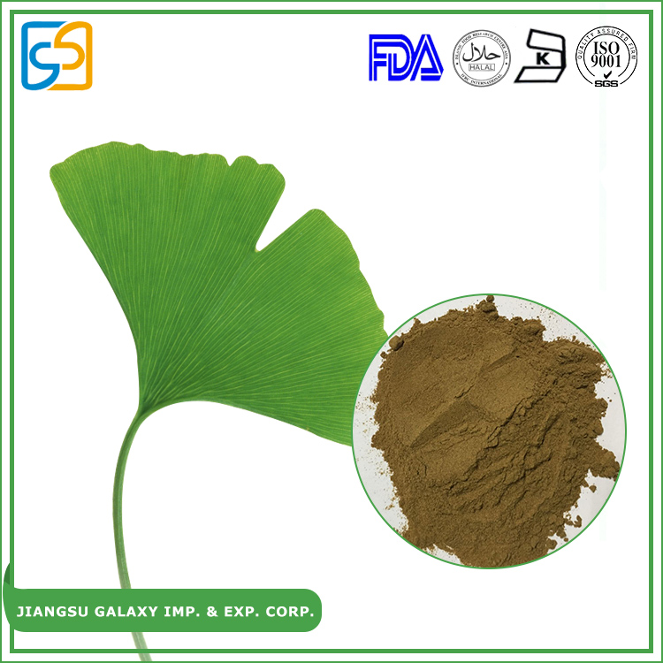 Factroy supply flavone glycosides 24% ginkgolides(lactones) 6% herbs ginkgo biloba leaf powder extract