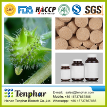 Hot Selling GMP Boost Immunity Tribulus Terrestris Extract Tablet