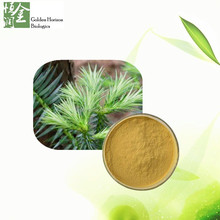 Factory supply for Natural 10:1 Pine Needle Powder