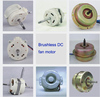 Brushless DC motor for solar electric fan