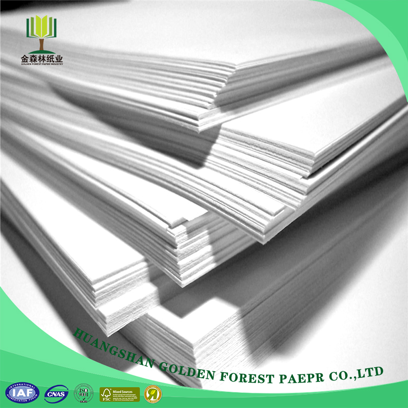 Paper Print Company With Pro Service