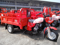 motor tricycle for cargo/200cc three wheel motorcycle/chopper motorcycle trikes