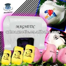 Magnetic low price portable digital flower polish printing machine
