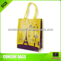 2013 Fashion Paris Handbags High Quality Non Woven Bags Free Spring/Autumn/Winter Tote