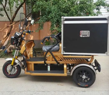 eco-friengly 2 passengers 500w cargo bike with ce