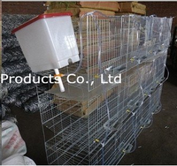 2016 (High Quality ,Top Promotion,Fast Delivery)Wire Rabbit Cages Sale
