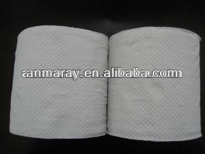 Embossed recycle toilet tissue paper
