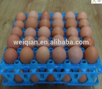 cheap price 30 eggs tray for market