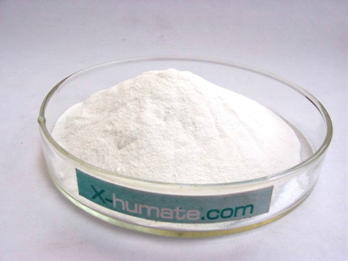 Sodium Formate 98% min Leather Chemicals