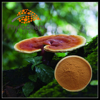 high quality ganoderma mushroom capsules Manufacturer with free sample