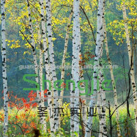 artificial white birch trees for sale