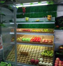 hot sale vegetable and fruir display with refrigerator shelf trays