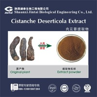 Pure Natural Cistanche Deserticola Extract Powder