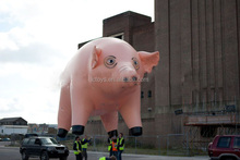 Custom giant inflatable pig balloons,inflatable flying pig