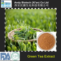 Water Soluble Green Tea Extract 95% Tea Polyphenols