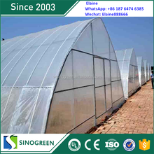 SinoGreen long life high tunnel used greenhouse equipment for sale