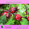 Pure red sorrel extract powder