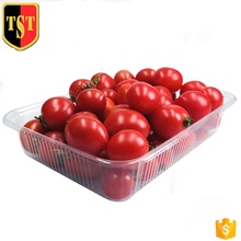 Customize disposable eco-friendly plastic food <strong>container</strong> pet fruit and vegetable packaging trays for supermarket