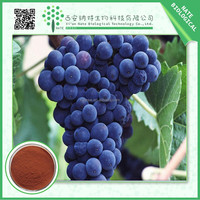 2015 hot selling Grape Seed Extract powder OPC 95% Polyphenols 40%Free Sample