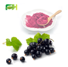 Daily Nutritional Supplement Certified Organic Blackcurrant Powder , FD Blackcurrant Powder , Blackcurrant Powder