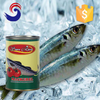 Best quality delicious canned mackerel keep in the fridge