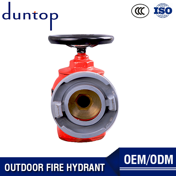 Pressure Reducing Type Indoor Fire Hydrant From Factory