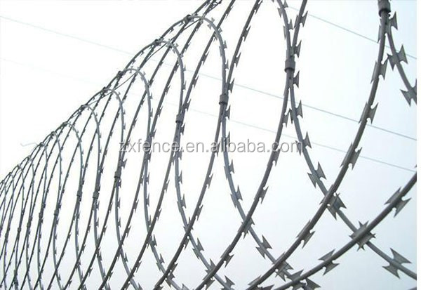 China new product multi-use double wire municipal green spaces fence