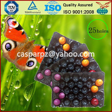 OEM Accepted FDA Approved Thermoformed Eco-friendly PVC Pear Trays for Protecting Fruit during Transportation