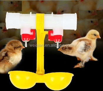 wholesale automatic poultry nipple drinker with two cup
