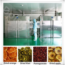 fruit drying oven