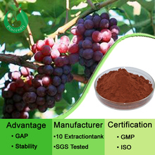 Grape seed opc polyphenols organic grape seed extract