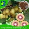 Hot sale tropical fruit seeds kiwi seeds for growing