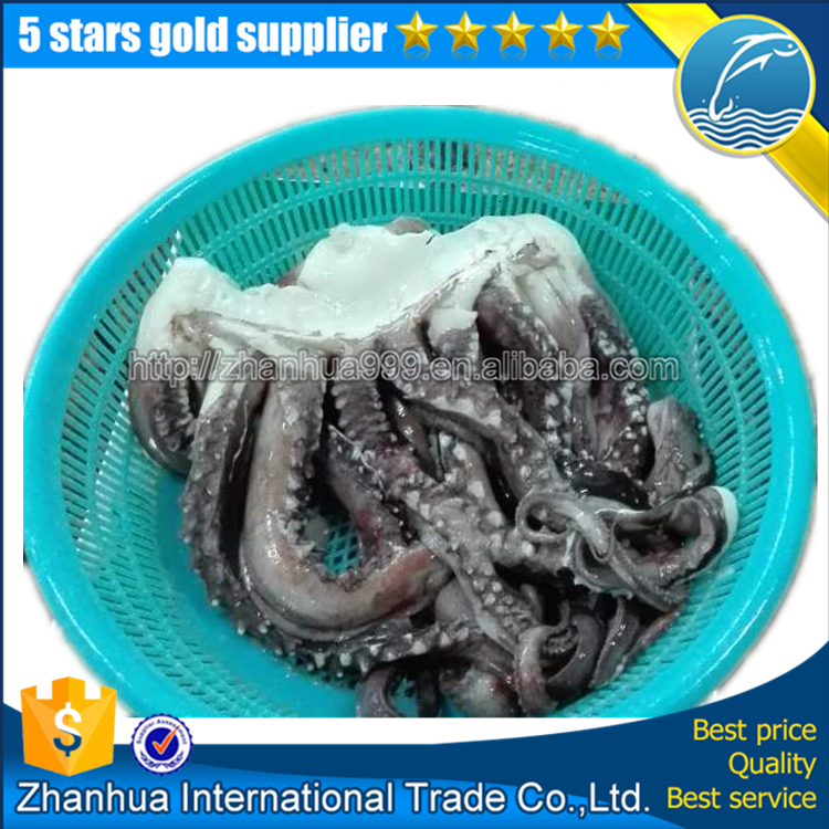 Nature Frozen Squid Giant Sexul Tentacle