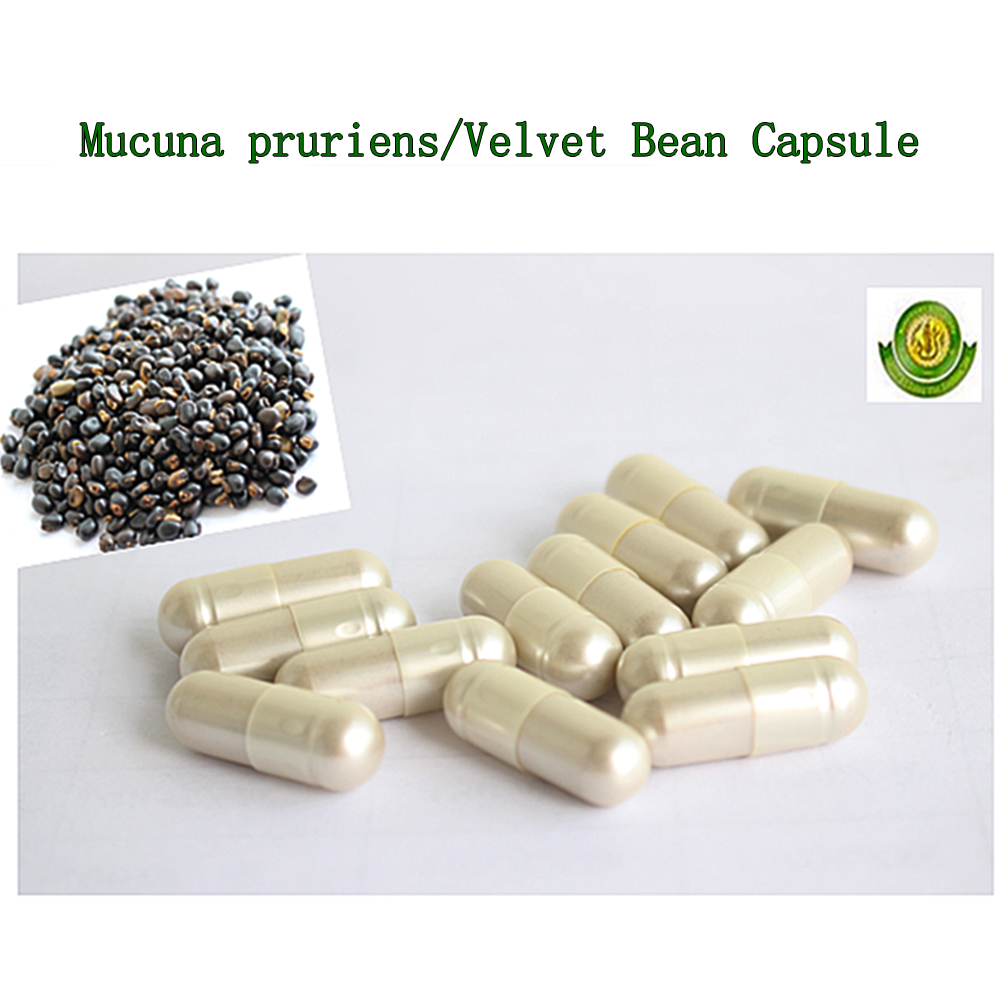Mucuna Pruriens capsule power of male enhancement oem ejaculation enhancers