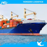 DDP sea shipping from china to netherlands