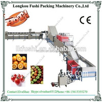 orange processing plant for washing waxing drying and sorting machine